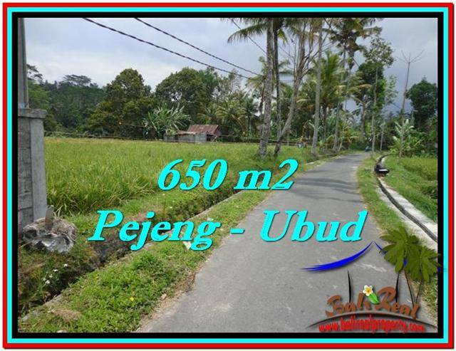 Magnificent PROPERTY LAND FOR SALE IN UBUD BALI TJUB522