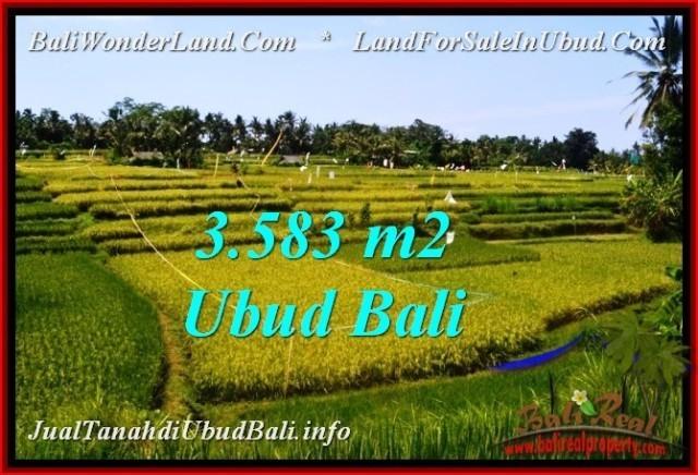 FOR SALE Affordable 3,583 m2 LAND IN UBUD BALI TJUB542