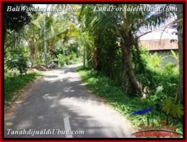 Beautiful 450 m2 LAND FOR SALE IN Ubud Pejeng TJUB535