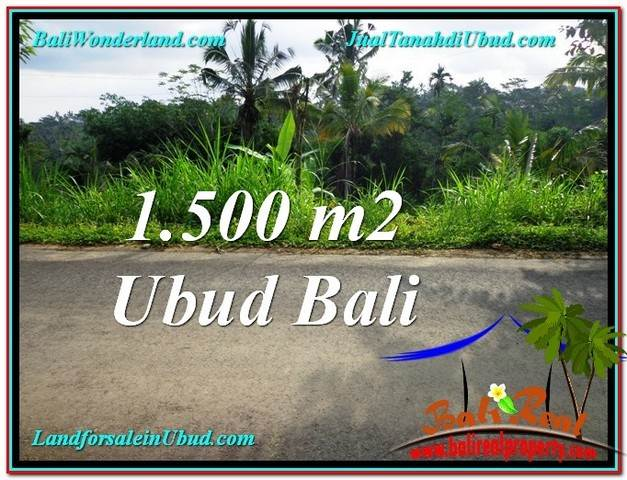 Beautiful PROPERTY 1,500 m2 LAND SALE IN Ubud Tegalalang TJUB556
