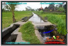 715 m2 LAND IN UBUD BALI FOR SALE TJUB557