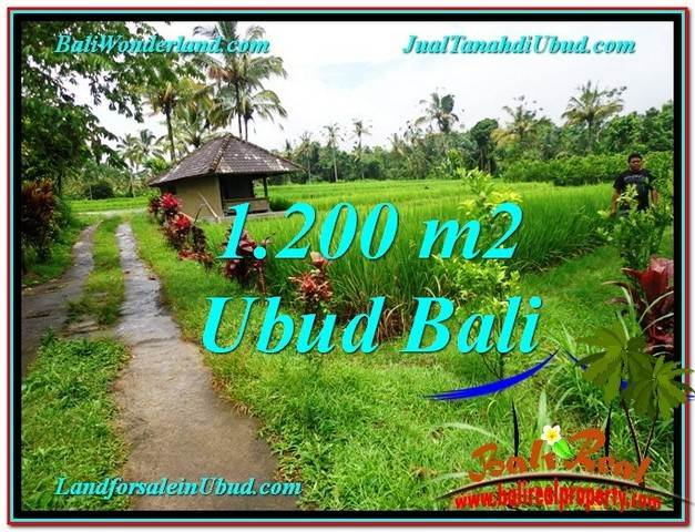 Magnificent LAND FOR SALE IN UBUD TJUB559