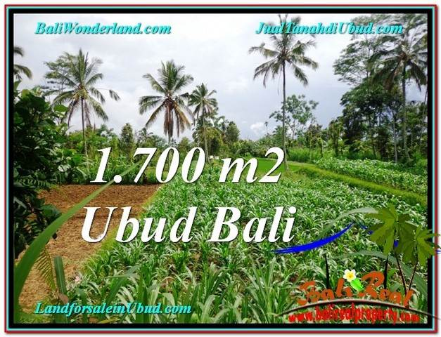 Beautiful LAND IN UBUD FOR SALE TJUB560