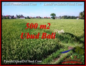 Exotic LAND FOR SALE IN UBUD TJUB545