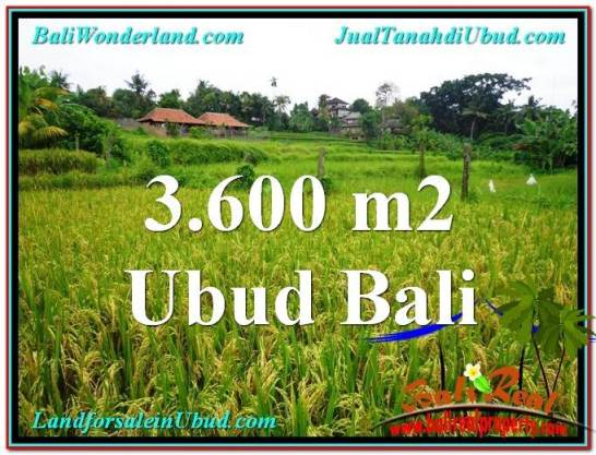 Magnificent UBUD BALI 3,600 m2 LAND FOR SALE TJUB566