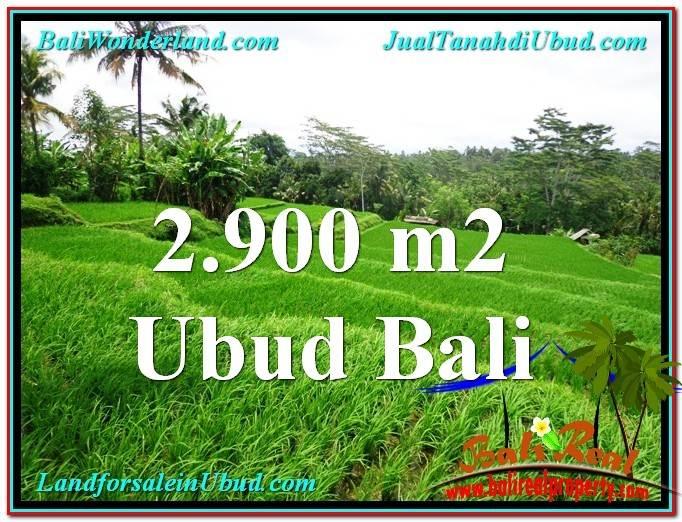 FOR SALE Beautiful 2,900 m2 LAND IN UBUD BALI TJUB564