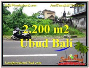 FOR SALE Affordable 2,200 m2 LAND IN UBUD BALI TJUB565