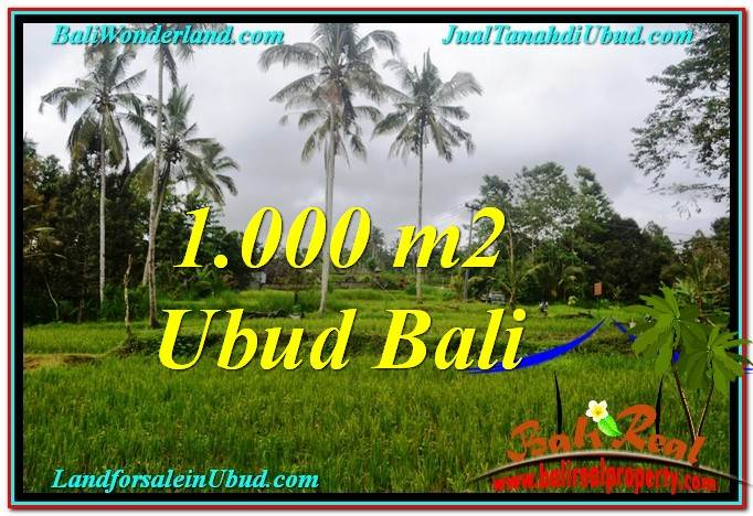 1,000 m2 LAND FOR SALE IN UBUD BALI TJUB570