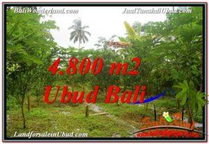 Exotic 4,800 m2 LAND FOR SALE IN Ubud Payangan TJUB571