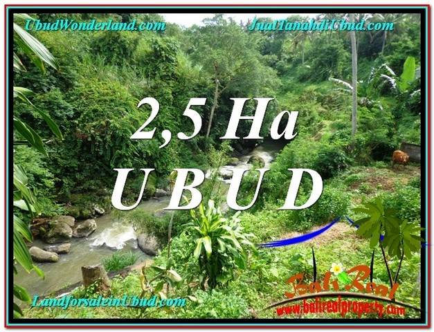 Exotic 26,000 m2 LAND SALE IN UBUD BALI TJUB579