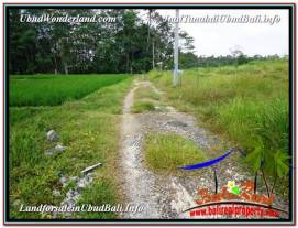 Beautiful UBUD LAND FOR SALE TJUB581