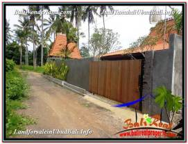 FOR SALE Exotic PROPERTY LAND IN UBUD TJUB585