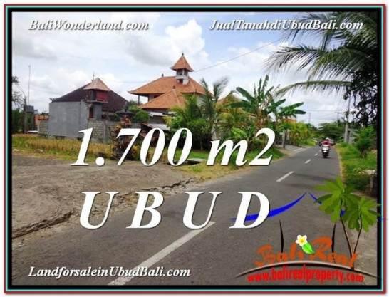 Magnificent PROPERTY UBUD LAND FOR SALE TJUB588