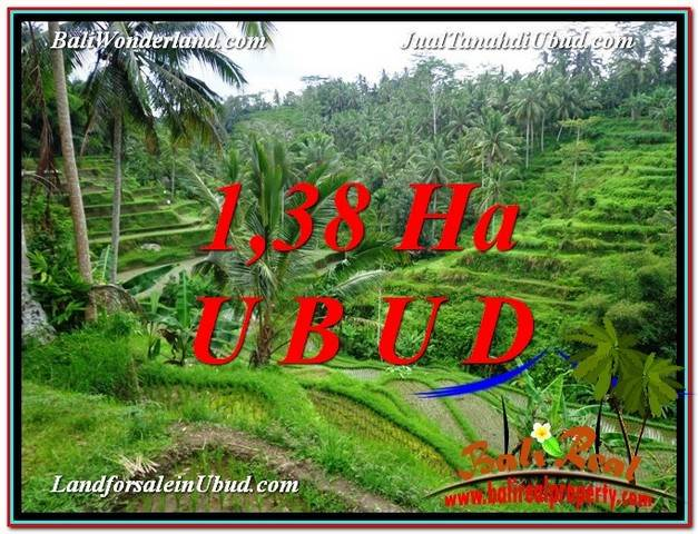 Beautiful PROPERTY 13,800 m2 LAND IN Ubud Tegalalang FOR SALE TJUB590