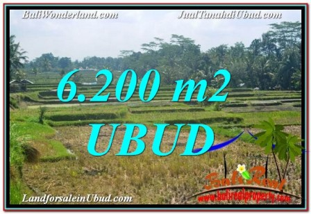 Affordable PROPERTY UBUD 6,200 m2 LAND FOR SALE TJUB631