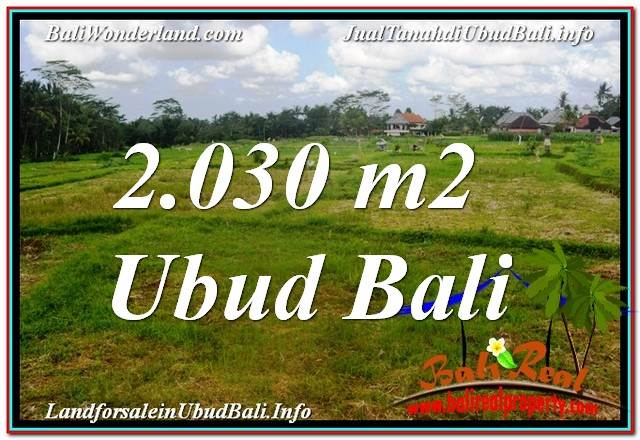 Exotic PROPERTY 2,030 m2 LAND FOR SALE IN Ubud Tegalalang TJUB623