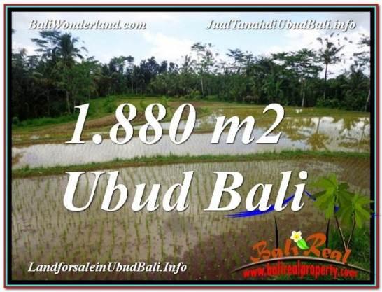 Exotic 1,880 m2 LAND SALE IN UBUD BALI TJUB613