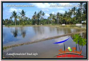 Affordable PROPERTY 300 m2 LAND IN Ubud Pejeng FOR SALE TJUB619