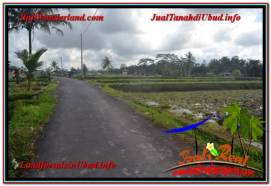 Affordable PROPERTY 2,400 m2 LAND SALE IN UBUD BALI TJUB620