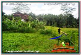 Magnificent PROPERTY 2,030 m2 LAND SALE IN Ubud Tegalalang TJUB623
