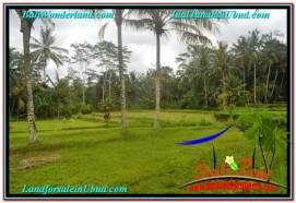 Affordable Ubud Tampak Siring BALI LAND FOR SALE TJUB634