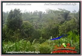 Beautiful UBUD LAND FOR SALE TJUB637