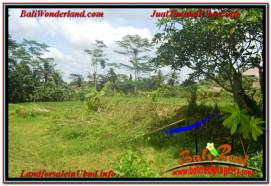 FOR SALE Exotic 1,100 m2 LAND IN UBUD BALI TJUB645
