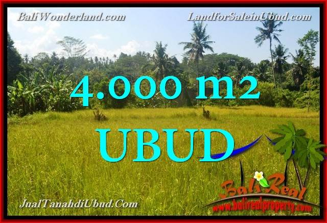 Affordable 4,000 m2 LAND FOR SALE IN UBUD BALI TJUB661