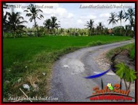 Affordable PROPERTY 3,400 m2 LAND FOR SALE IN UBUD BALI TJUB656