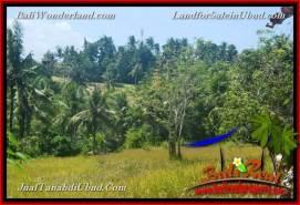 FOR SALE Beautiful PROPERTY 4,900 m2 LAND IN Ubud Gianyar TJUB665