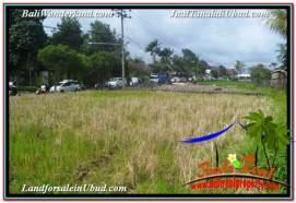 Exotic 450 m2 LAND IN SENTRAL UBUD FOR SALE TJUB671