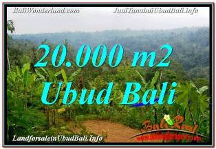 Exotic 20,000 m2 LAND SALE IN UBUD PAYANGAN TJUB678