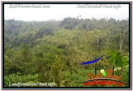 FOR SALE Beautiful LAND IN UBUD BALI TJUB679