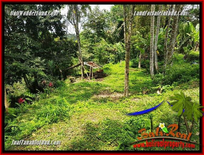Exotic Land in Ubud for sale TJUB691