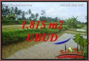 Magnificent Property Ubud Pejeng 1,815 m2 Land for sale TJUB703