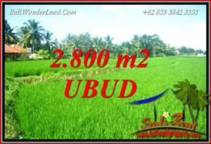 Beautiful 2,800 m2 Land sale in Sentral Ubud TJUB726