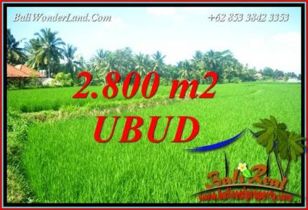 Beautiful 2,800 m2 Land sale in Sentral Ubud TJUB726