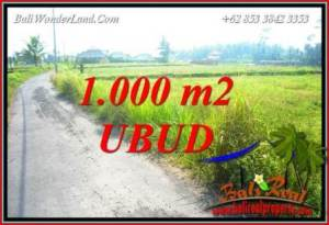 Exotic 1,000 m2 Land sale in Ubud Bali TJUB739