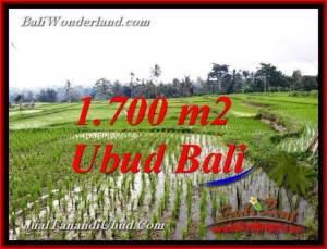 LAND SALE IN TEGALALANG UBUD BALI TJUB770