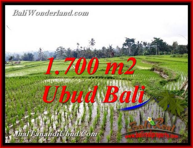 Beautiful PROPERTY 1,700 m2 LAND SALE IN TEGALALANG UBUD TJUB770