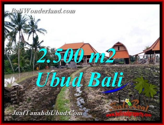 Affordable PROPERTY PEJENG UBUD 2,500 m2 LAND FOR SALE TJUB772