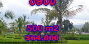 Exotic Property in Bali, Land for sale in Ubud Bali – 500 sqm @ $ 128
