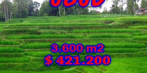 Land for sale in Ubud Bali 36 Ares in Ubud Tegalalang