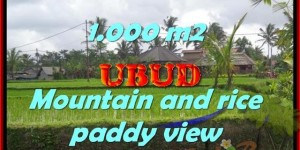 Land for sale in Bali, spectacular view in Ubud Bali – TJUB424