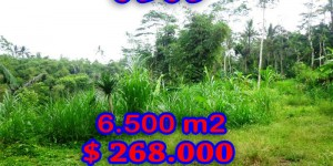Land in Ubud Bali for sale, Eye-catching view in Ubud Tegalalang – TJUB241