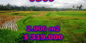 Interesting Land for sale in Ubud Bali, mountain view in Ubud Tegalalang – TJUB253