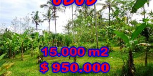 Amazing Property in Bali, Land for sale in Ubud Bali – 15.000 sqm @ $ 63