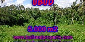 Interesting Land for sale in Ubud Bali, paddy field and river view in Central Ubud – TJUB353