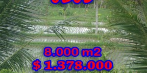 Exotic Property for sale in Bali, land for sale in Ubud Tampak Siring – TJUB277