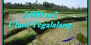 FOR SALE Beautiful LAND IN Ubud Tegalalang BALI TJUB529
